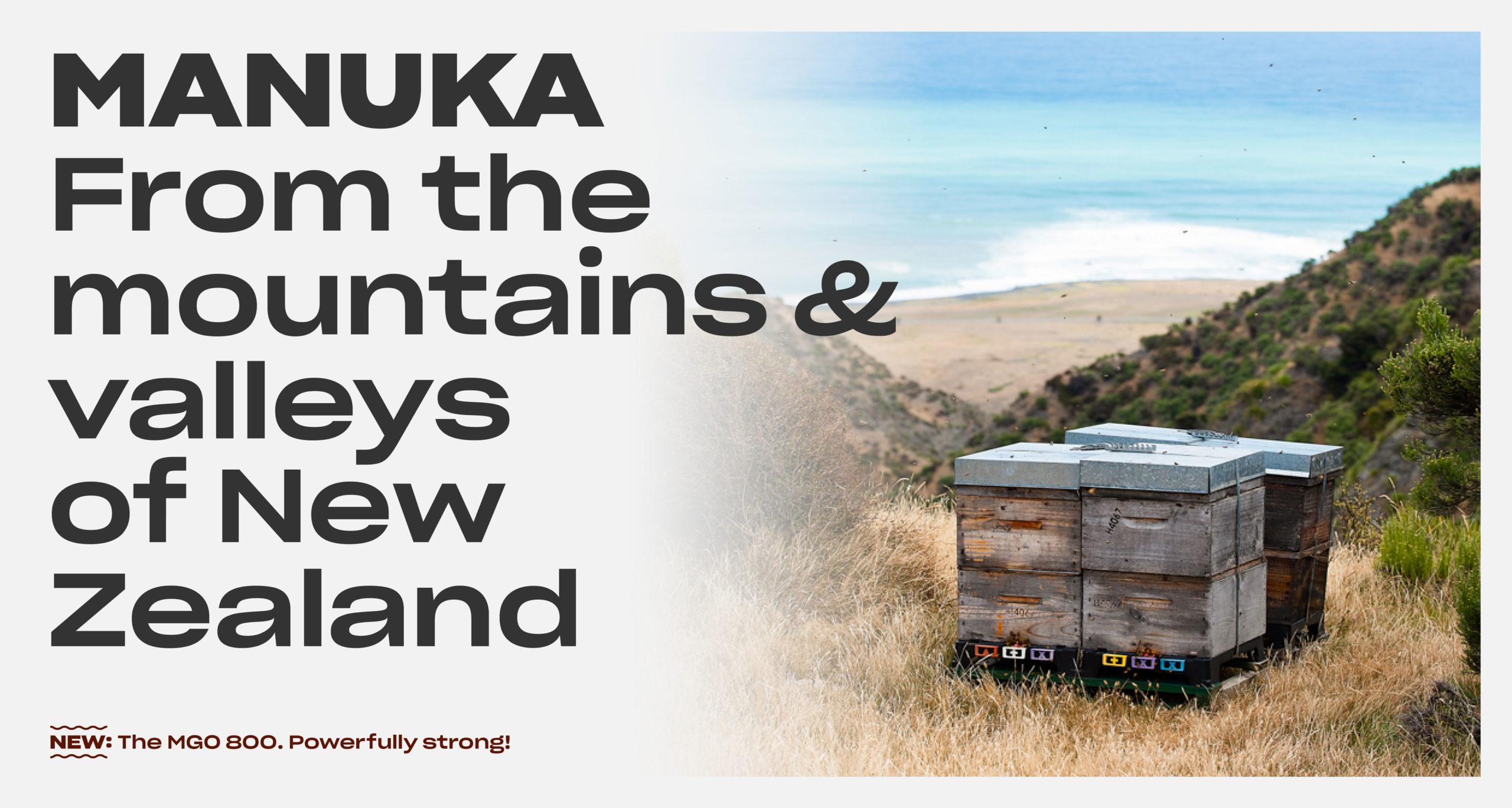 Manuka honey from the mountains of New Zealand
